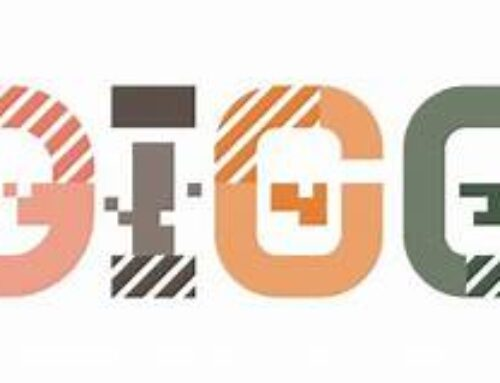 DIGGS Rapport: Myndigheters strategiska IT-projekt,it-kostnader och mognad